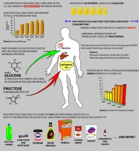 711x825xhigh_fructose_corn_syrup_chart-pagespeed-ic-91rwrprfwx