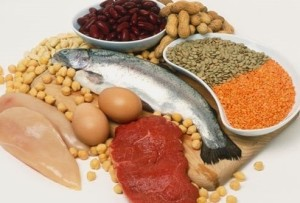 protein-foods-for-your-body