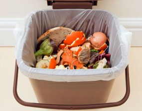 BK9BDX UK. Food waste in indoor food waste bin with lid open indoors